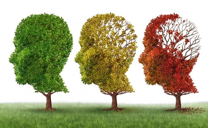fases-del-alzheimer